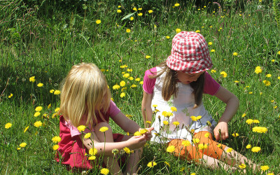 Outdoor play in the summer
